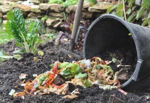 bucket spilling various vegetable peelings on soil from the garden
