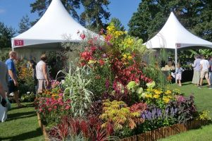 RHS Harlow Carr Flower Show