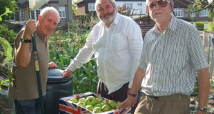 Apple Juice and Cider making