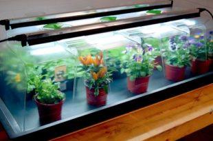 Gardening Gadgets Heated Propogator