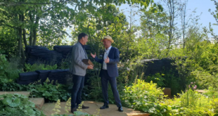 Designer Andy Sturgeon with Joe Swift on The M&G Garden, Best in Show winner 2019