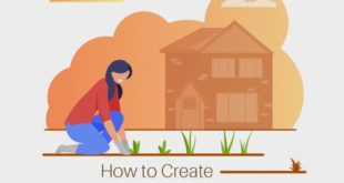How To Create A Kitchen Garden