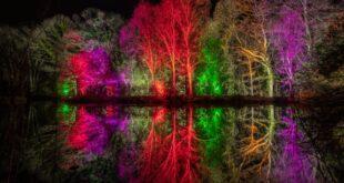 Glow2021